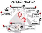 kobilanz aludose - Okobilanz Beispiel